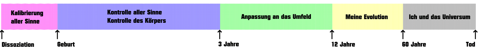 PhasenPerson